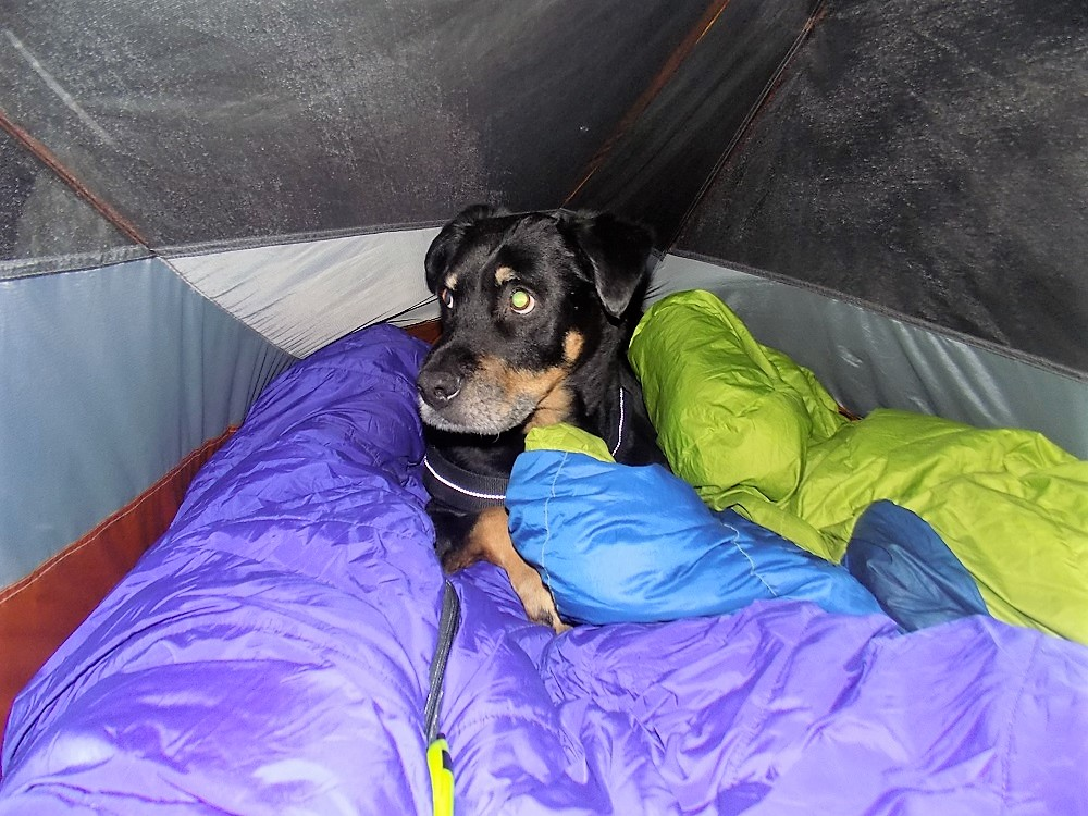 Carolyn Higgins Capone Backpacking in tent with me.