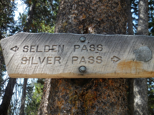 Selden pass and silver pass trail sign