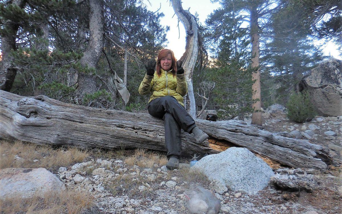 Day 24: Thousand Island Lake to Lyell Canyon